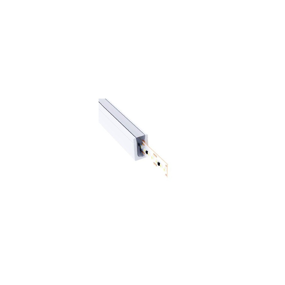 Mini néon LED blanc 6mm 24V